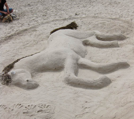 ephemeral art sand sculpture horse