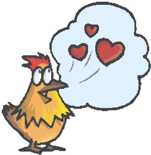 chicken talking about love