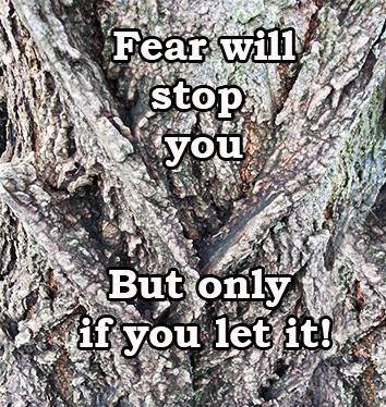 fear and personal development