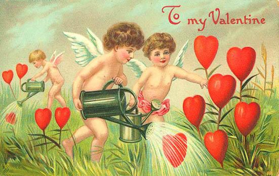 cupids watering love heart flowers