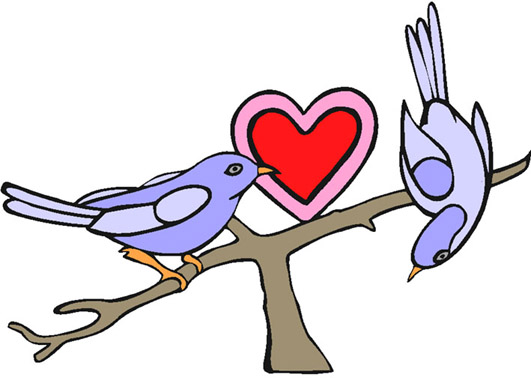 love heart drawings lovebirds with heart