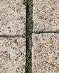ego building roads in Denmark